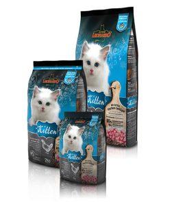 Leonardo-kittens