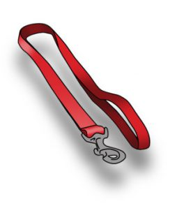 dogs-collars-leads-harnesses-fixed-leads-and-long-leads-350x350 (1)