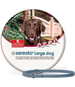 seresto_large_dog