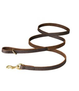gentle-strong-dog-leash-for-dogs-big