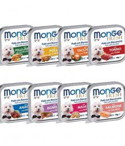 Monge_Dog