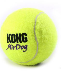kong_tennis_xl