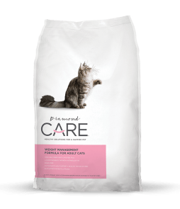 weight-management-for-cats-e1535558932384