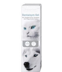 dentalzym gel-large